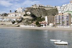 Oliven setzen in Cullera (Valencia), Spanien auf den Strand stockbilder