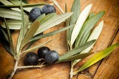 Oliven und Olivenblätter Lizenzfreie Stockfotos