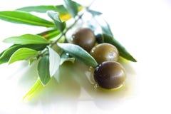 Oliven und Schmieröl stockfoto