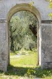 Olivenbäume durch den Torbogen stockfoto
