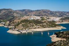 Olivenbäume um See Iznajar in Andalusien Stockbild