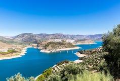 Olivenbäume um See Iznajar in Andalusien Stockfotos