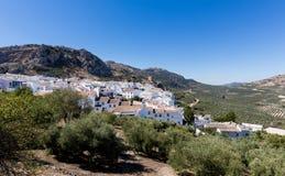 Olivenbäume umgeben hilltown von Zuheros in Andalusien Stockbilder