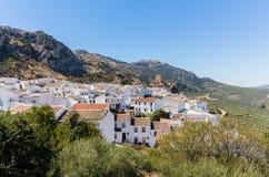Olivenbäume umgeben hilltown von Zuheros in Andalusien Lizenzfreies Stockbild