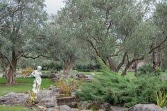 Olivenbäume und alte Skulptur in einem exotischen Park Lizenzfreie Stockfotos
