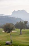 Olivenbäume und Pentadaktylos-Gebirgszug im Hintergrund Lizenzfreie Stockfotos