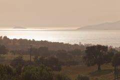 Olivenbaum-Ackerland in Griechenland Lizenzfreie Stockfotografie