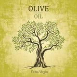 Olivenbaum. Olivenöl. Olivenbaum des Vektors auf Weinlesepapier. Für Aufkleber Satz. lizenzfreie abbildung