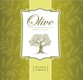 Olivenbaum. Olivenöl. Olivenbaum des Vektors. Für Aufkleber Satz. vektor abbildung