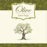 Olivenbaum. Olivenöl. Olivenbaum des Vektors. Für labe lizenzfreie abbildung