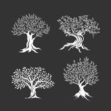 Olivenbaumschattenbildikonensatz lokalisiert stock abbildung
