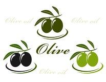 Olivensatz lizenzfreie abbildung