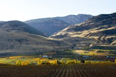 Oliver Okanagan Valley Vineyard British Columbia. Scenic autumn view of the rural landscape and vineyards of Oliver located in the Okanagan Valley of British Royalty Free Stock Photography
