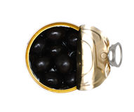Olives. Small can with black olives Royalty Free Stock Photo