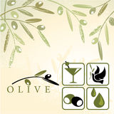Olives. Olive and design elements: martini, bird, oil Stock Image