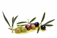 Olives. Royalty Free Stock Photos
