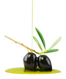 Olives And Live Oil Royalty Free Stock Photo