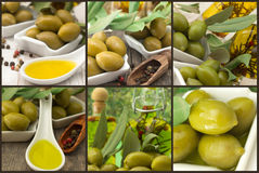Olives And Olive Oil - Collage Royalty Free Stock Photos
