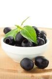 Olives and basil. Isolated on white background Royalty Free Stock Image