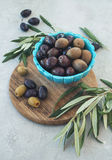 Olives in the blue ceramic bowl and green branch on a gray background Royalty Free Stock Images