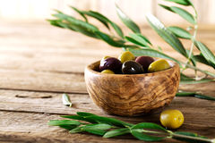 Olives on branch Stock Photography