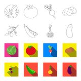 Olives on a branch, peas, onions, eggplant. Vegetables set collection icons in outline,flat style vector symbol stock Stock Photo
