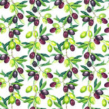Olives branches. Seamless pattern. Watercolor. Olives branches of olive tree. Seamless pattern. Watercolor Royalty Free Stock Image