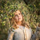Olives de cueillette de jeune fille Photo stock