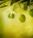 Olives design background Stock Photo