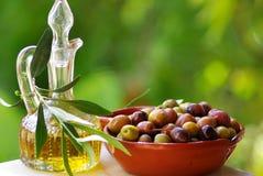 Olives du Portugal. Images libres de droits