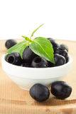 Olives et basilic image libre de droits