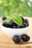 Olives et basilic Photos libres de droits