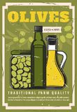Olives, extra virgin olive oil in jars or bottles. Olive oil in bottles and preserved olives in jar. Vector seasoning, extra virgin cooking condiment, natural royalty free illustration