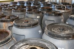 Olives factory. Olives in metal barrels in an interior plant for stock photos