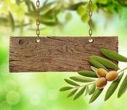 Olives fraîches, olivier et conseil en bois Photo libre de droits