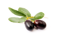 Olives isolated Royalty Free Stock Photos