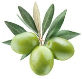 Olives with leaves Royalty Free Stock Photo