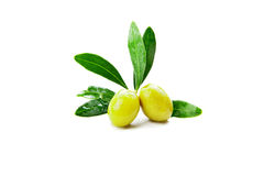 Olives with leaves on branch isolated over white. Olives with leaves on branch isolated on a white background Royalty Free Stock Photo