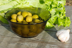 Olives and lettuce Stock Images