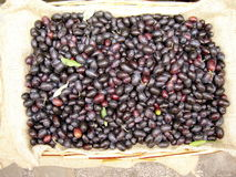 Olives on market. A full box of fresh black Italian olives for sale on a market shown from top Royalty Free Stock Photography