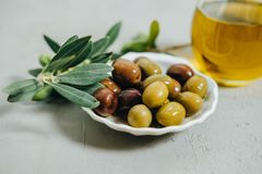 Olives naturelles, huile et branche verte sur le fond gris Photographie stock