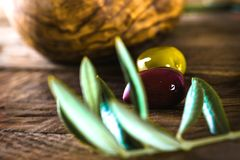 Olives on branch. Olives on olive branch. Wooden table with olives in bowl Royalty Free Stock Photos