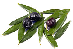 Olives and olive leaves Stock Photos