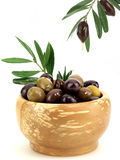 Olives and olive oil. Fresh olives and olive oil Stock Photos