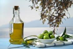 Olives and olive oil. Against Mediterranean landscape Stock Images