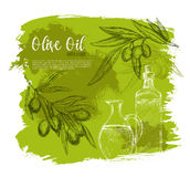 Olives and olive oil poster vector sketch Royalty Free Stock Photos