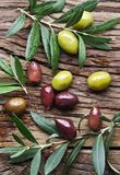 Olives and olive twigs. stock images