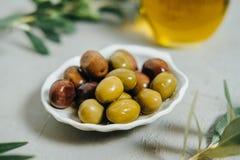 Olives organiques, huile et branche verte sur le fond gris Images stock