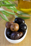 Olives with plant Stock Images