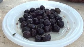 Olives on a plate and a fly stock video
